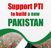 I Support PTI Facebook Display Picture
